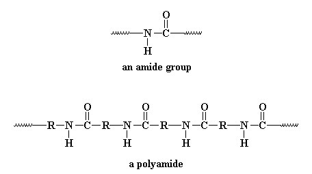 amide group & polyamide